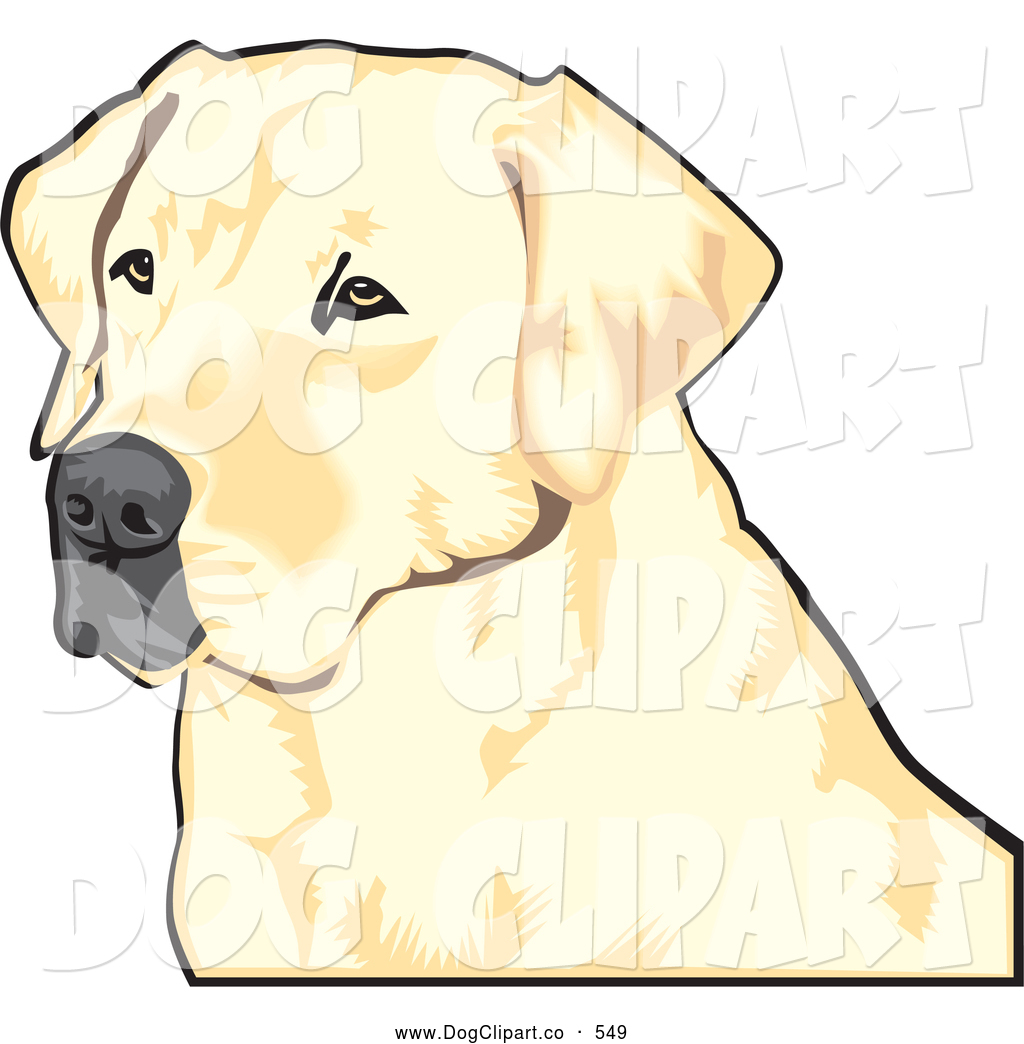 ... : Vector Clip Art of a Friendly Yellow Labrador Retriever Dog