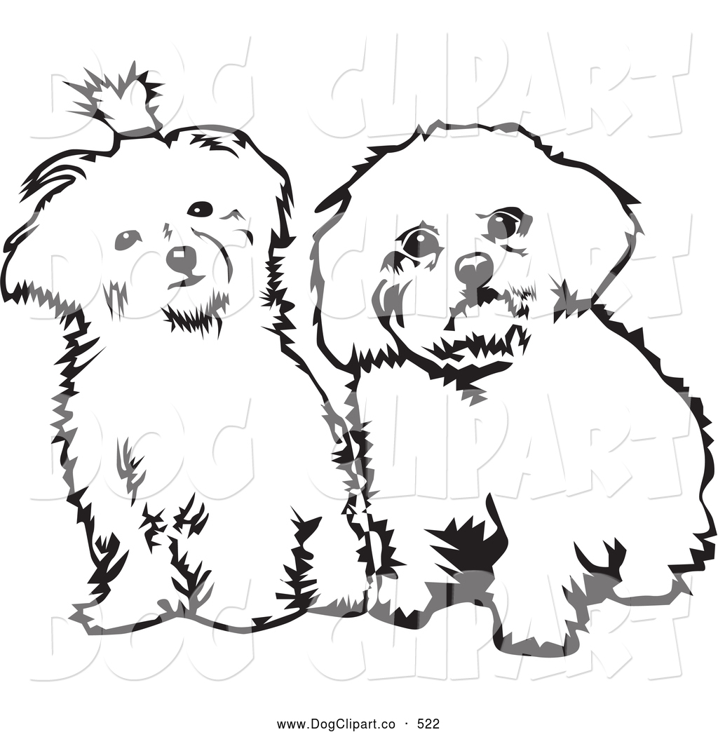 maltese dog clipart - photo #22