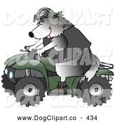 Clip Art of a Cool Friendly Border Collie Wearing a Black Vest and Driving a Green Offroad ATV by Djart