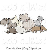 Clip Art of Different Breeds of Dogs in a Group on White by Djart