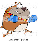 Vector Cartoon Clip Art of a Brown Bulldog Boxer with Blue Gloves by Hit Toon