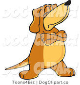 Vector Cartoon Clip Art of a Brown Dog Mascot Cartoon Character with Crossed Arms, Disobeying Commands, Looking off to the Side by Toons4Biz