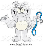 Vector Cartoon Clip Art of a Bulldog Holding a Leash by Toons4Biz