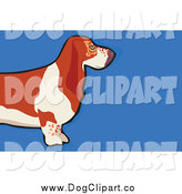 Vector Clip Art of a Basset Hound Dog over Blue by Prawny
