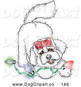 Vector Clip Art of a Bichon Frise Dog Playing with a Strand of Colorful Christmas Lights by Andy Nortnik