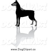 Vector Clip Art of a Black Silhouetted Doberman Pinscher Dog and Reflection by Pams Clipart