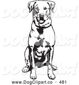 Vector Clip Art of a Cheerful and Obedient Labrador Retriever Dog Seated and Facing Front, Waiting for a Command by David Rey