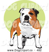 Vector Clip Art of a Cheerful Happy Brown and White Bulldog Standing over a Green and White Background by David Rey