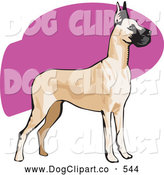 Vector Clip Art of a Cute Alert Brown and Black Great Dane Dog with Cropped Ears, Standing and Facing to the Right by David Rey