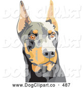 Vector Clip Art of a Cute and Alert Brown and Black Doberman Pinscher Dog, or Dobie, with Cropped Ears, on a White Background by David Rey