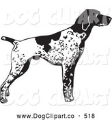 Vector Clip Art of a Cute and Alert English Pointer Dog, Standing and Pointing, in Profile, Facing Right by David Rey