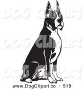 Vector Clip Art of a Cute and Obedient Boxer Dog with Cropped Ears, Seated and Facing to the Right by David Rey