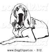 Vector Clip Art of a Cute and Tired and Lazy Bloodhound Dog, or St. Hubert Hound, Lying down and Looking Forward by David Rey