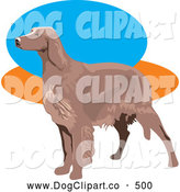 Vector Clip Art of a Cute Brown Irish Setter Dog Facing to the Left over a Blue, Orange and White Background by David Rey