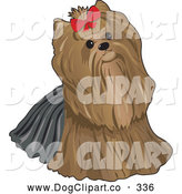 Vector Clip Art of a Cute Brown Pampered Long Haired Yorkshire Terrier Dog Looking up and Wearing a Red Bow by Maria Bell