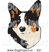 Vector Clip Art of a Cute Brown, White and Black Welsh Corgi Dog Looking Upwards at the Viewer, on a White Background by David Rey