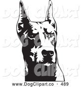 Vector Clip Art of a Cute Doberman Pinscher or Dobie Dog Wiith Cropped Ears, on a White Background by David Rey