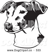 Vector Clip Art of a Cute Jack Russell Terrier Dog, or Jrt, Looking off to the Left, over a White Background by David Rey