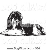 Vector Clip Art of a Cute Long Haired Shih Tzu Dog Lying down and Looking at the Viewer, on a White Background by David Rey