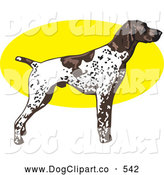 Vector Clip Art of a Cute White and Brown Spotted German Shorthair Pointer Dog Standing Alert in Profile, Facing Right by David Rey