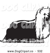 Vector Clip Art of a Cute Yorkie Yorkshire Terrier Dog in Profile, Facing Right, on a White Background by David Rey