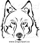 Vector Clip Art of a Face of a Black and White Husky Dog by Vector Tradition SM