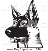 Vector Clip Art of a Friendly Alert German Shepherd with His Mouth Slightly Open, Looking off to the Left, on a White Background by David Rey