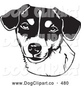 Vector Clip Art of a Friendly Jack Russell Terrier Canine Dog over a White Background by David Rey