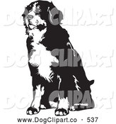 Vector Clip Art of a Friendly Seated Bernese Mountain Dog Facing Slightly to the Left, on a White Background by David Rey