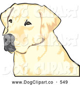 Vector Clip Art of a Friendly Yellow Labrador Retriever Dog with a Black Nose, Waiting Patiently and Looking off to the Left While Hunting by David Rey