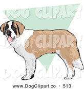 Vector Clip Art of a Grinning Friendly Brown and White St Bernard Dog Standing over a Green and White Background by David Rey