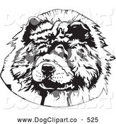 Vector Clip Art of a Happy Hairy Chow Chow Dog Looking Slightly to the Left, on a White Background by David Rey