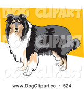 Vector Clip Art of a Long Haired Brown, White and Black Collie Dog Canine Standing Against a Yellow and White Background by David Rey