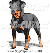 Vector Clip Art of a Muscular Brown and Black Rottweiler Dog Canine Standing and Looking to the LeftMuscular Brown and Black Rottweiler Dog Canine Standing and Looking to the Left by David Rey