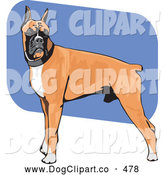 Vector Clip Art of a Muscular Brown, White and Black Boxer Dog Canine Standing with His Body in Profile, His Head Facing Front by David Rey