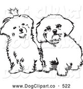 Vector Clip Art of a Pair of Cute Maltese Dogs Sitting Side by Side and Looking Curiously at the Viewer, on a White Background by David Rey