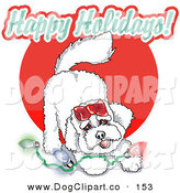 Vector Clip Art of a Playful White Bichon Frise Dog with Christmas Lights by Andy Nortnik