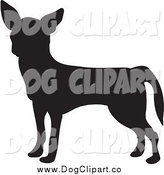 Vector Clip Art of a Silhouetted Chihuahua Dog Profile by Prawny
