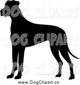 Vector Clip Art of a Silhouetted Great Dane Dog by Pams Clipart