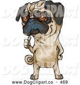 Vector Clip Art of a Smiling Cute Brown Eyed Pug Dog Hitchhiking and Standing on His Hind Legs by Tonis Pan