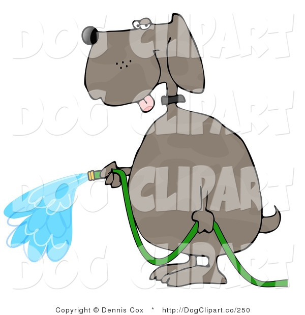 Cartoon Clip Art of a Human-like Dog Watering Outdoor Gardens with a Standard Household Garden Hose