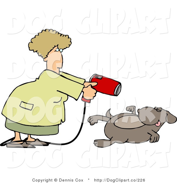Clip Art of a Female Groomer Blow Drying a Dog with a Powerful Hair Dryer