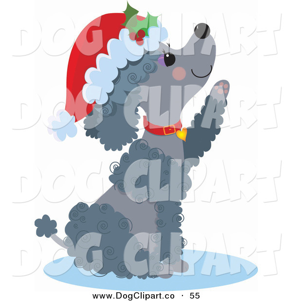 Clip Art of a Happy Gray Poodle Puppy Dog Wearing a Santa Hat and Red Collar