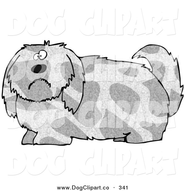 Clip Art of a Overly Large Spotted Gray and Tan Dog with Long Shaggy Hair, Looking at the Viewer with a Sad or Confused Expression