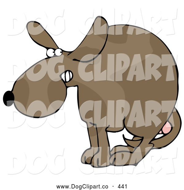 Clip Art of a Scared Dog at the Vets Office, Cowering with His Tail Tucked Between His Legs, Protecting His Testicles Before Getting Neutered, on White