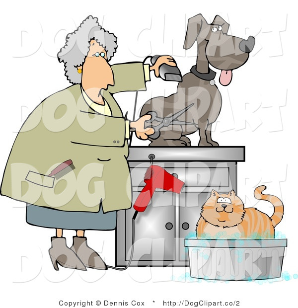 Clip Art of a Senior Pet Groomer