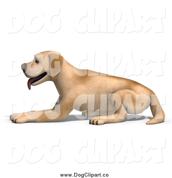 Vector Clip Art of a 3d Yellow Lab Dog Resting