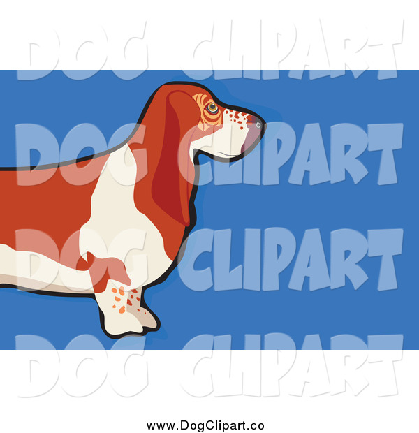 Vector Clip Art of a Basset Hound Dog over Blue
