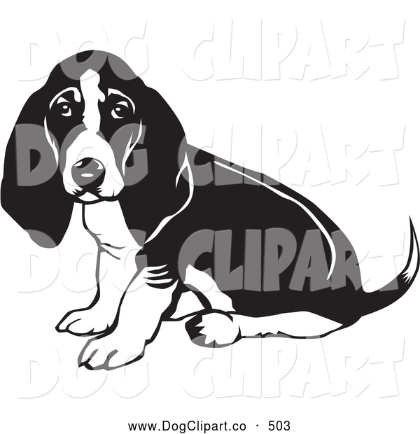 Vector Clip Art of a Basset Hound Dog with Sitting and Looking at the Viewer While Wagging His Tail on White