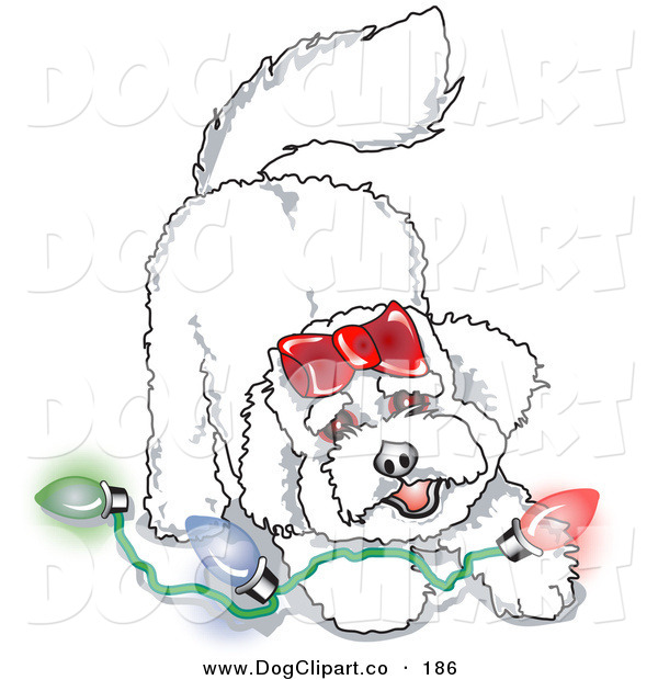Vector Clip Art of a Bichon Frise Dog Playing with a Strand of Colorful Christmas Lights